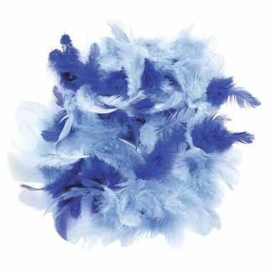 10 gram versiering sierveren blauw tinten