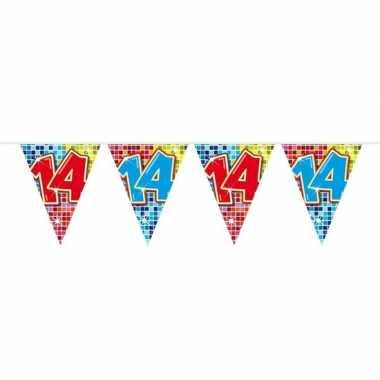 1x mini vlaggenlijn / slinger verjaardag versiering 14 jaar