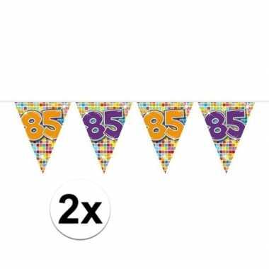 2x mini vlaggenlijn / slinger verjaardag versiering 85 jaar