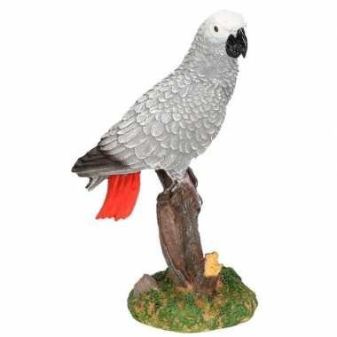 Dierenbeeld papegaai grijze roodstaart vogel 21 cm woonversiering