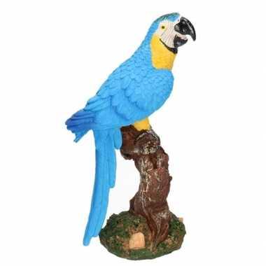 Dierenbeeld papegaai vogel blauw 26 cm woonversiering