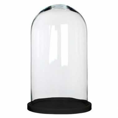 Glazen versiering stolp hella op zwart houten plateau 23 x 38 cm