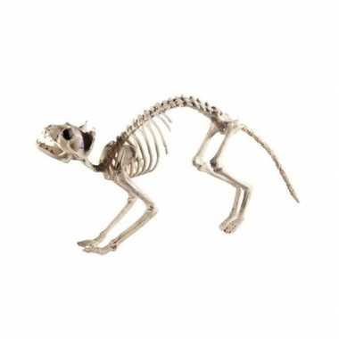 Halloween kat/poes skelet halloween/horror versiering 60 cm