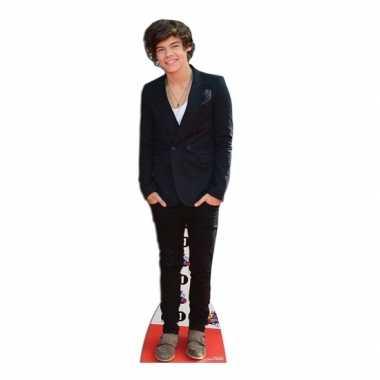 Harry styles versiering borden
