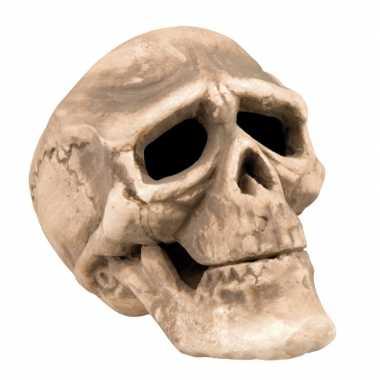 Horror versiering schedels 22 cm