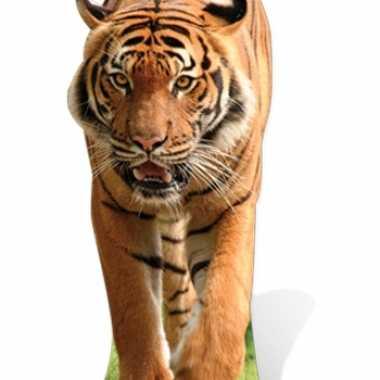 Kartonnen versiering bord grote tijger