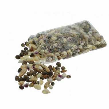 Kleine versiering schelpen schelpjes zakken 2 kilo