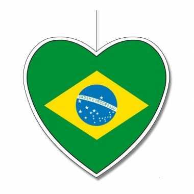 Papieren versiering hart brazilie 30 cm