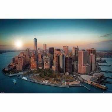 Poster new york freedom tower 61 x 91 cm wandversiering