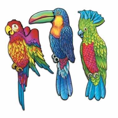 Tropische vogels muurversiering 43 cm