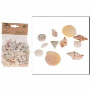 Versiering schelpen mix 350 gram
