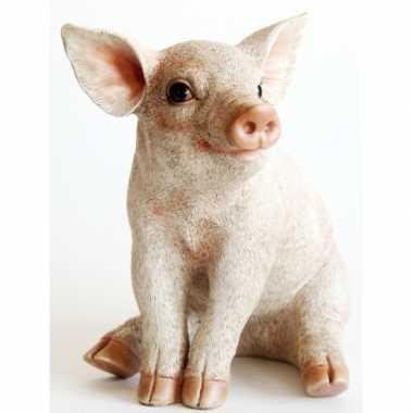 Versiering varkens beeldje 24 cm