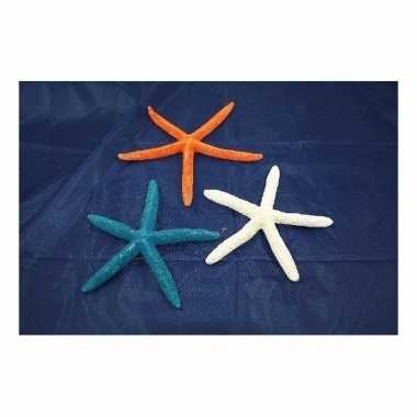 Woonversiering zeester blauw 17 cm