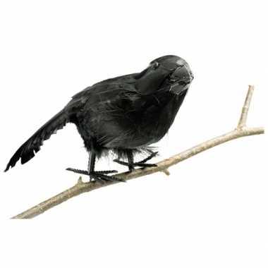 Zwarte versieringve raaf