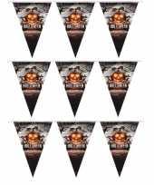3x vlaggenlijnen slingers pompoen 250 cm halloween versiering