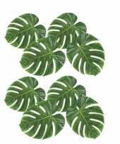 8x versiering tropische bladeren