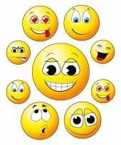 9x raamstickers smileys emoticon raamversiering
