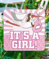 Geboorte versiering tuinbord meisje
