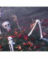 Halloween botten versiering