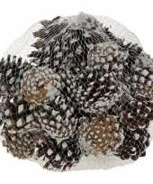 Versiering dennenappels bruin sneeuw 5 cm