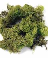 Versiering mos lichtgroen 100 gram