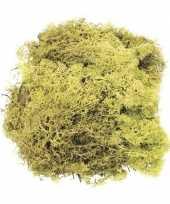 Versiering mos lichtgroen 50 gram