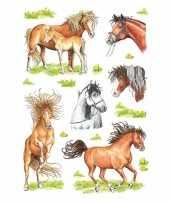 Versiering paarden stickers