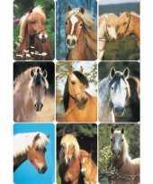 Versiering paardenhoofden etiketten 3x