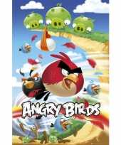 Versiering poster angry birds