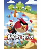 Versiering poster angry birds