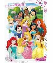 Versiering poster prinsessen 61 x 91 5 cm