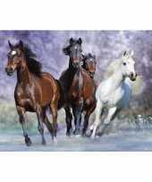 Versiering poster van paarden