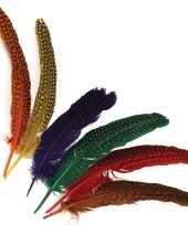 Versieringve veren met stippen 12 stuks